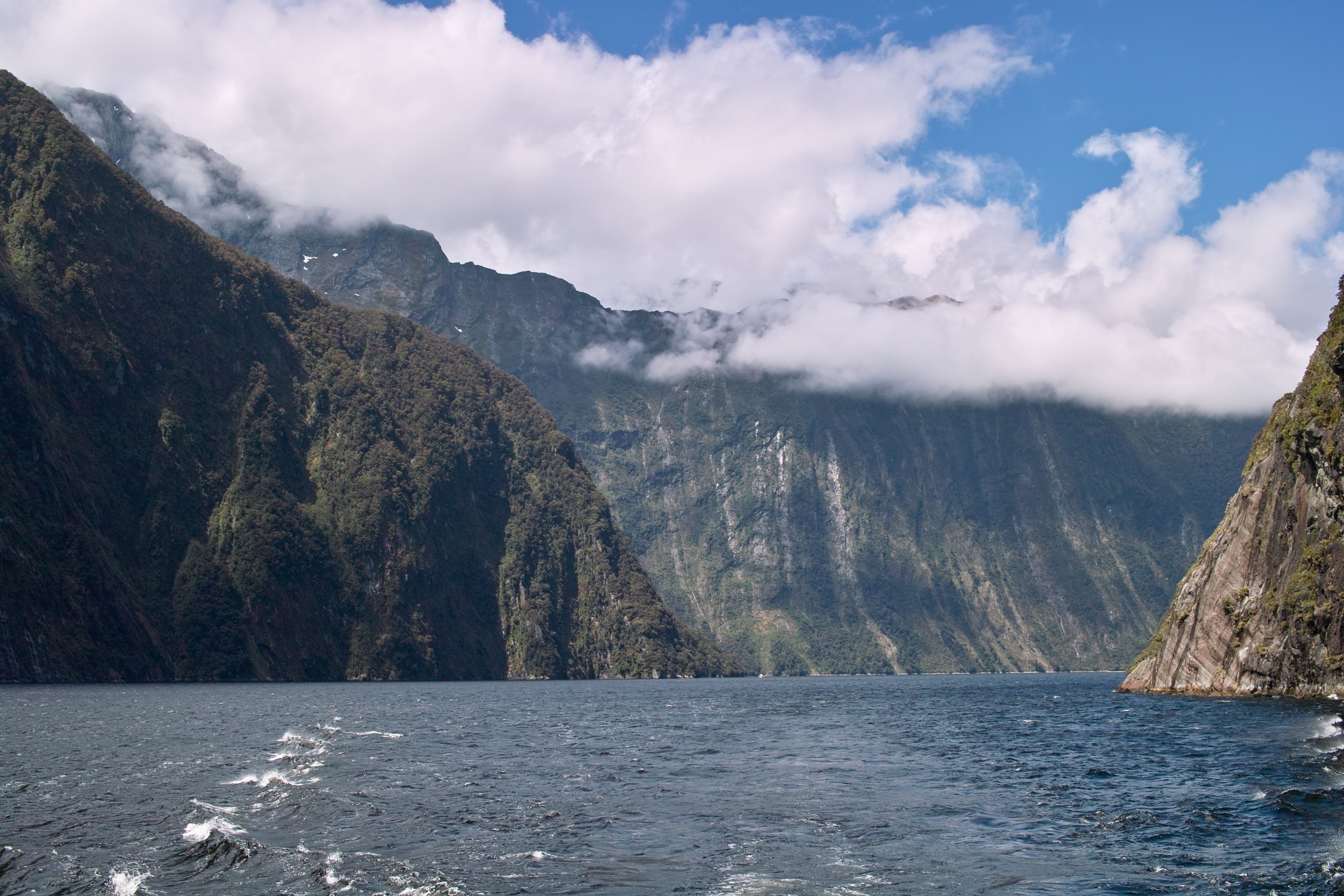 2319 - Milford Sound cruise view