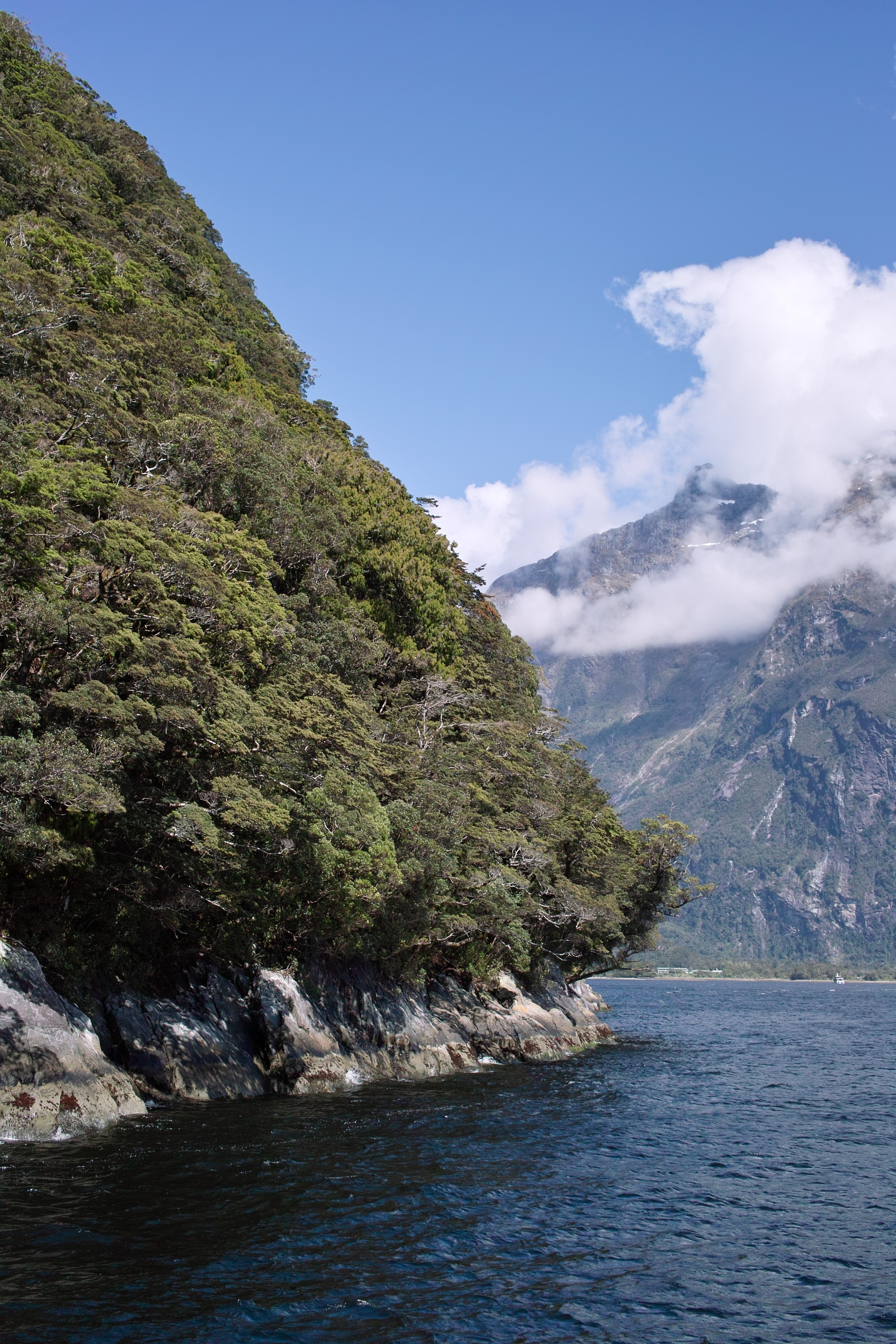 2470 - Milford Sound cruise view