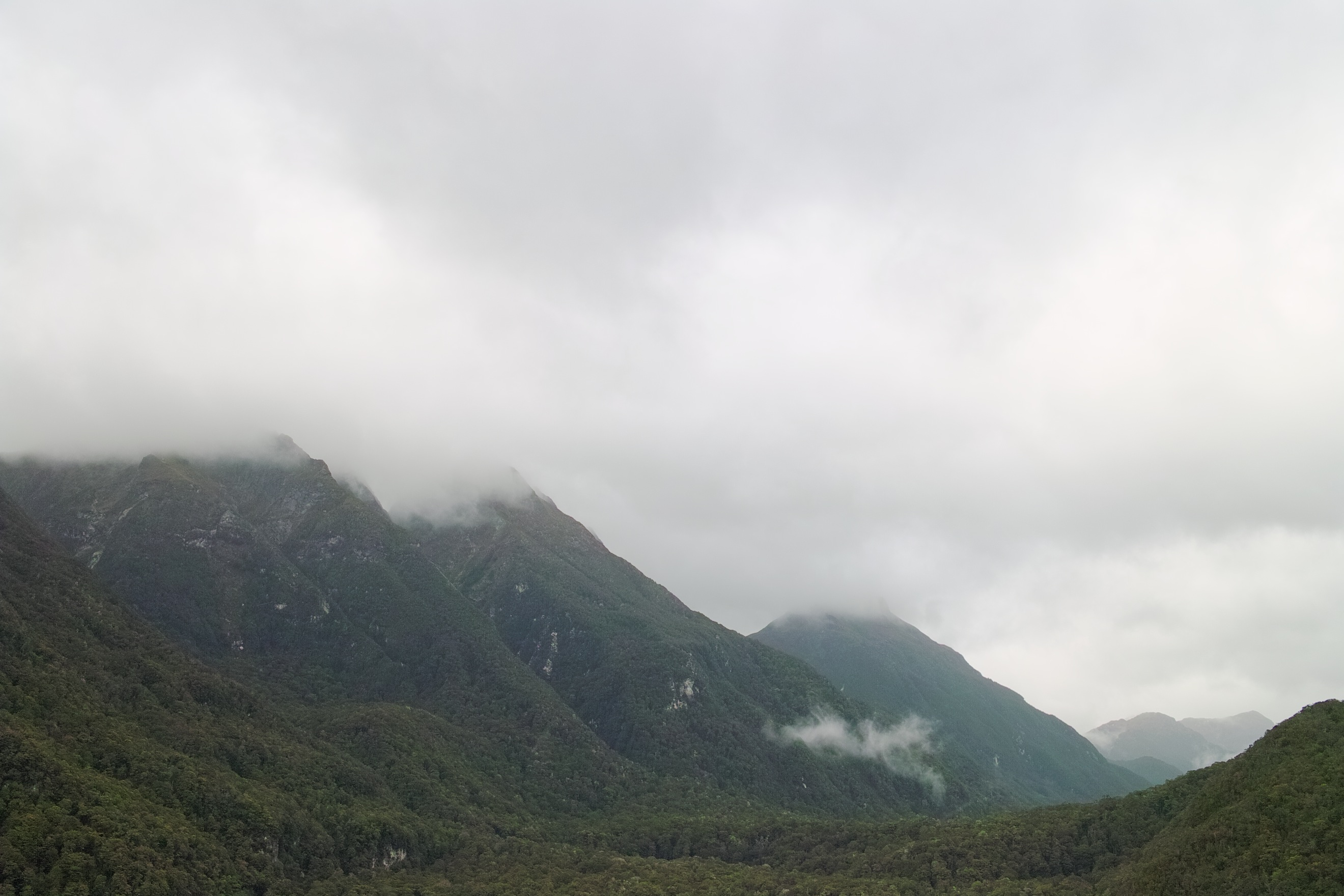 2713 - View from the Lake Manapouri ferry to West Arm