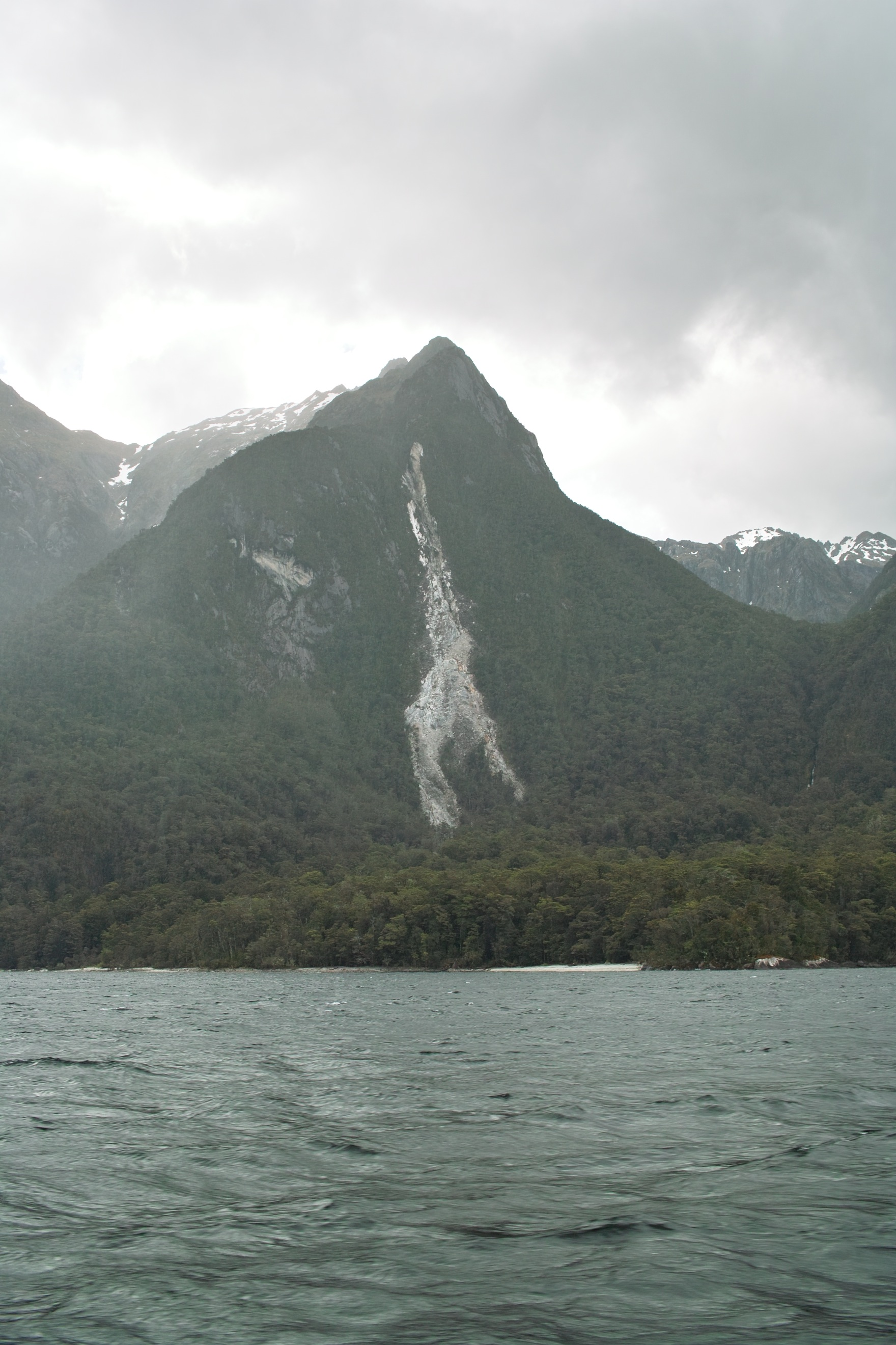 2989 - Lake Manapouri return ferry view of the giraffe landslip