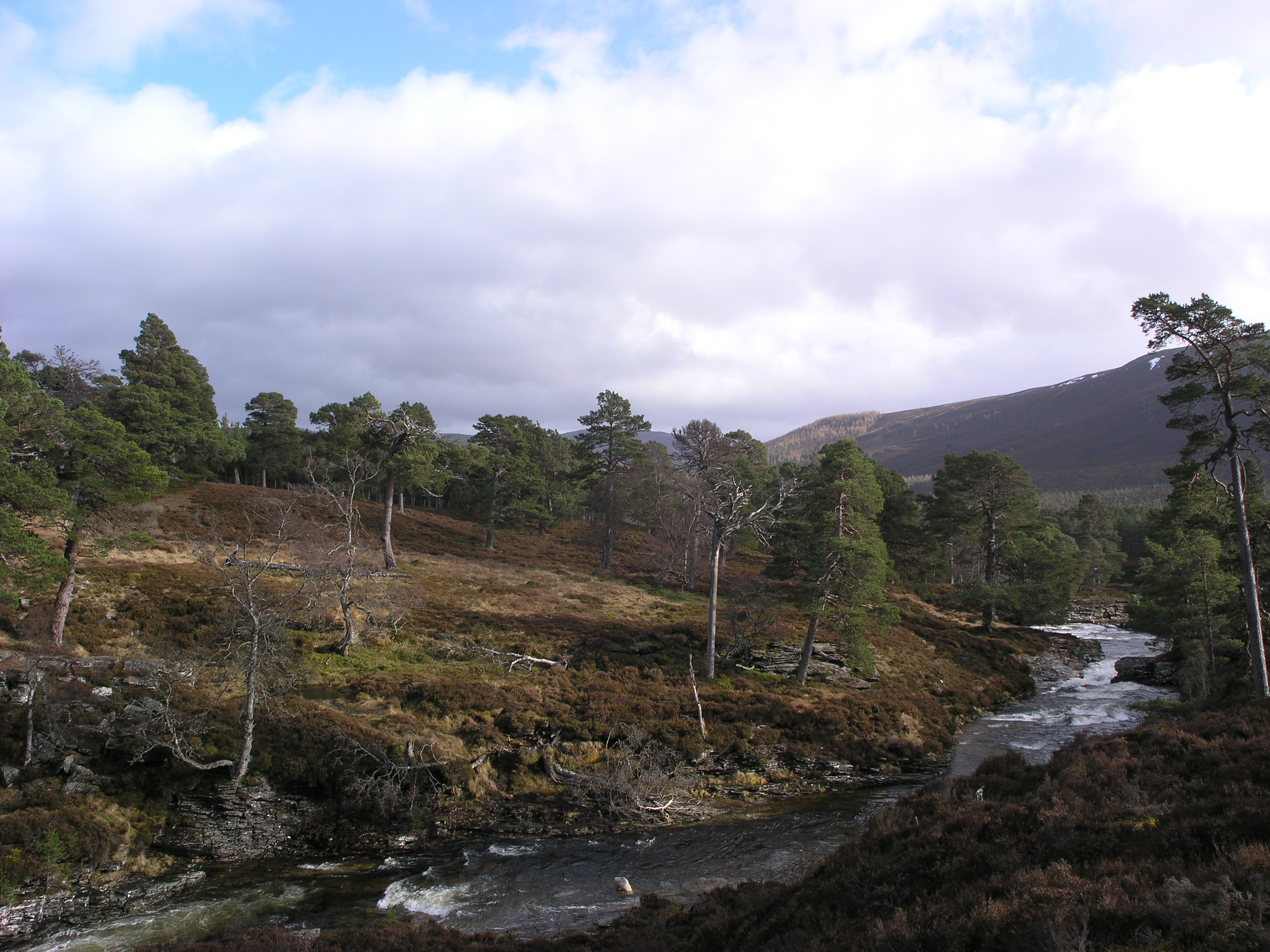 29 - Fantastic views in the Cairngorms
