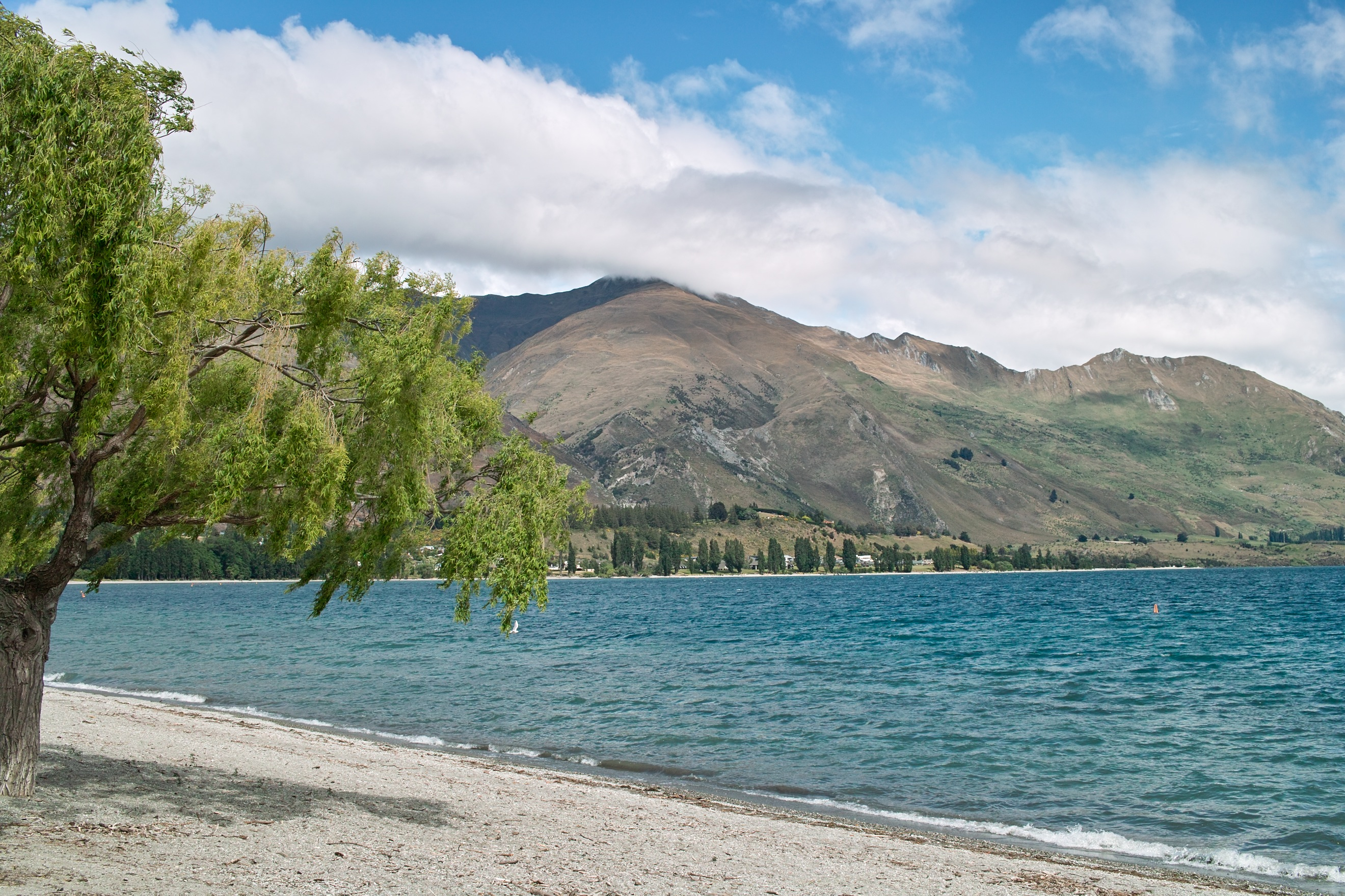 2076 - Morning view of Lake Wanaka from Wanaka waterfront